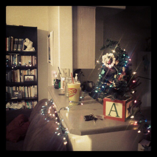 My little Christmas tree and twinkle lights. Keeping things simple this year!