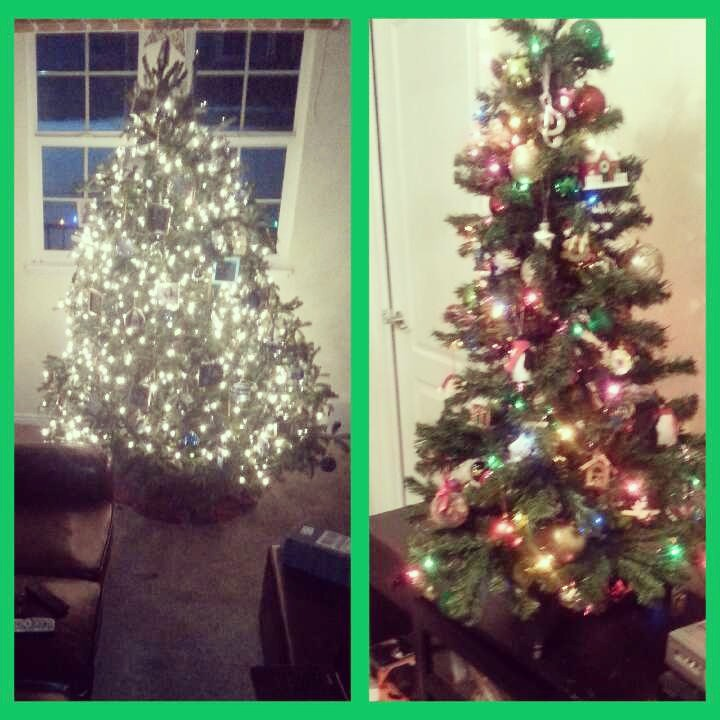 Both of my Christmas Trees