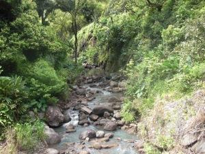 waimea trail