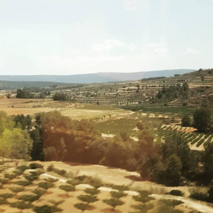 spain view from train